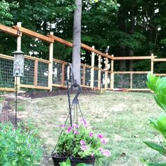 How to build a deer proof funky garden enclosure for Fishing line deer fence