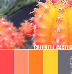 Pink, Yellow, Orange, Gray Cactus Color Palette