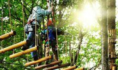 """Apre un nuovo parco avventura al boschetto della Playa: """"Liotru Adventure Park"""". Il Parco Avventura aperto ogni..."""