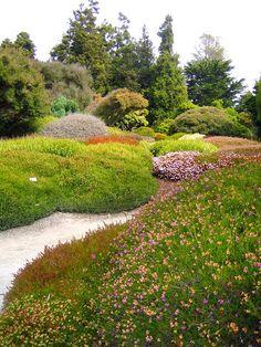 One of the best spots in Mendocino: Mendocino Botanical Gardens