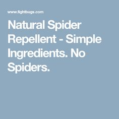 1000 images about house on pinterest small deck designs Natural spider repellent