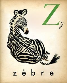 french-alphabet-print-3-vintage-zebra-ilustration