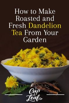 Cutting caffeine but love the taste of coffee? Dandelion tea is your answer. Learn how to make dandelion tea out of roots, flowers, and leaves. Lemon Benefits, Matcha Benefits, Coconut Health Benefits, Dandelion Health Benefits, Dandelion Recipes, Homemade Tea, Tomato Nutrition, Types Of Tea, Matcha Green Tea