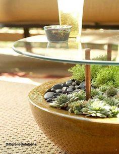 Hermosa mesa con suculentas <3