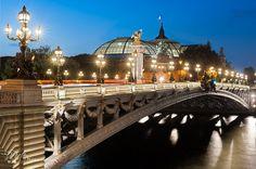 Alexandre III bridge at blue hour - Paris