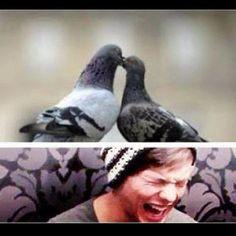 KEVIN?!li am laughing way too hard at this!!!!:^)