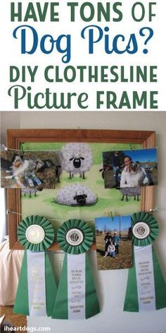 Do you have tons of dog pictures? Make a DIY clothesline picture frame to showcase your pal!