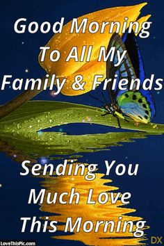 Good Morning To All My Family And Friends Sending You Much Love This Morning flower butterfly pretty morning gifs good morning gifs beautiful good morning quotes quotes for family and friends family and friends Good Morning Family Quotes, Good Morning Quotes Friendship, Good Morning Messages Friends, Friends Are Family Quotes, Good Morning Cards, Cute Good Morning, Good Morning Inspirational Quotes, Morning Greetings Quotes, Good Morning Picture
