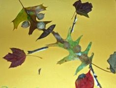 Project to go with Leaf Man by Lois Ehlert