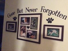 This is my pet memorial wall. - This is my pet memorial wall. Cat Memorial, Memorial Ideas, Dog Shadow Box, Pet Remembrance, Memory Wall, Animal Room, Dog Rooms, Pet Loss, Diy Stuffed Animals