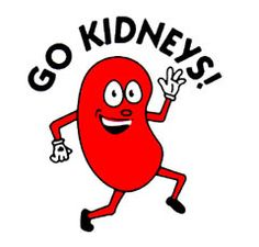 funny kidney photos | Nick Gabriel's Page - TransplantCafe.com - The Gift of eLife!