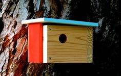 Case Study Prefab: Modern Birdhouse In Light Blue And Red