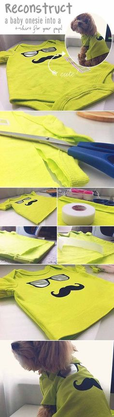 Check out 12 DIY Dog Clothes and Coats | Baby Onesie to Dog Shirt by DIY Ready at diyready.com/... Más