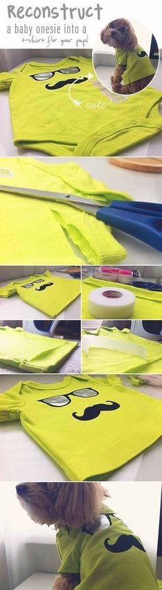 Check out 12 DIY Dog Clothes and Coats   Baby Onesie to Dog Shirt by DIY Ready at diyready.com/... Más
