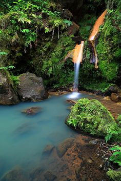 Sao Miguel - Azores Island, Portugal.  My Great Grandmother was from the Azores.  I want to go there someday.