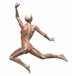 Image result for physiotherapy quotes