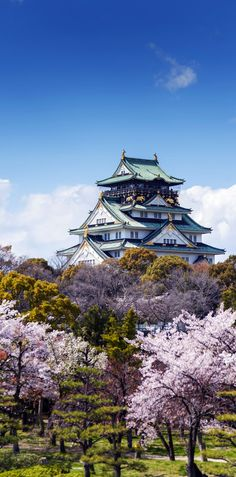 Amazing View of Osaka Castle with Sakura Blossom in Osaka, Japan. I didn't go to Osaka but when I went to Japan it was just as beautiful. Places Around The World, Oh The Places You'll Go, Travel Around The World, Places To Travel, Travel Destinations, Around The Worlds, Beautiful World, Beautiful Places, Amazing Places