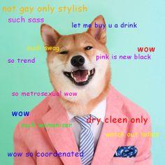 Doge Shibe meme