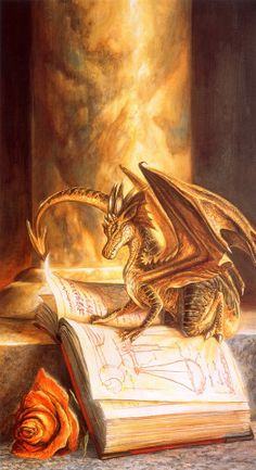 ♥ ۩ Who can pass up a book reading dragon? Who can pass up a book that a dragon would read? ۩