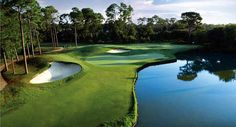 Golf Destin, FL: Play the Shalimar Pointe Golf Club Course with the Resorts of Pelican Beach's Golf Package Golf Holidays, Girls Golf, Best Golf Courses, Holiday Resort, Golf Tips, Spring Break, Golf Clubs, Country, World