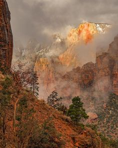 Zion National Park, Utah - Christina Adele Warburg