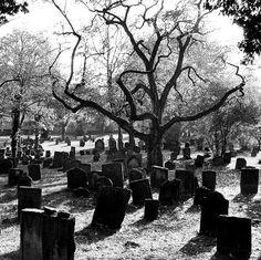 Grave yard/ cemetery exploring