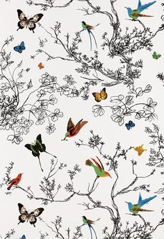 cute wallpaper for a small bathroom in out home; goes well with white fixtures and you can pull out any accent color from the various birds in the pattern!  #Schuamcher