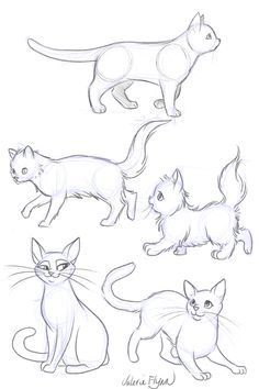 Animal Sketches, Art Drawings Sketches, Animal Drawings, Tier Doodles, Manga Cat, Kitten Drawing, Wie Zeichnet Man Manga, Warrior Cats Art, Animal Doodles