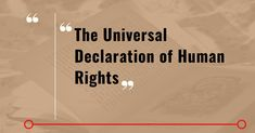 22 What Are The Basic Human Rights Ideas Human Rights Declaration Of Human Rights Human
