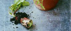 Noma's recipe for edible earth.