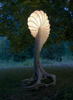 Driftwood base light