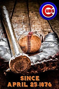 Chicgo Cubs, Cubs Win, Bear Cubs, Bears, Cub Sport, Go Cubs Go, Chicago Cubs Baseball, Sports Teams, Cubbies