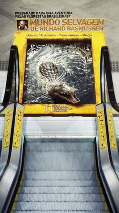 Guerrilla advertising from National Geographic in Brazil. This is a good piece of advertising because people can't ignore it if it's in their way. This will get people talking and sometimes word of mouth is the most effective method of marketing. Guerilla Marketing, Street Marketing, Experiential Marketing, Marketing Ideas, Creative Advertising, Guerrilla Advertising, Advertising Campaign, Advertising Design, Advertising Methods