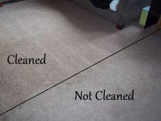 Homemade Carpet Shampoo: 1 Tbsp baking soda, 1/3 cup vinegar, hot water to fill line, and 1 Tbsp laundry detergent in standard carpet steamer.