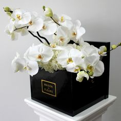 Maison des Fleurs is an online flower shop that supplies and provides flower delivery services and arrangements to hotels, offices & other retail business. Flower Box Gift, Flower Boxes, Deco Floral, Arte Floral, Floral Design, Luxury Flowers, Beautiful Flowers, White Orchids, White Flowers