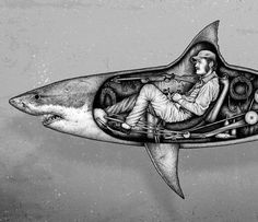 Man in shark
