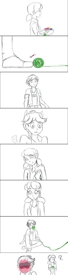 Miraculous Ladybug & Chat Noir - Marinette -  Adrien is not a Cat