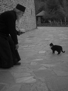 Mount Athos - kindness of an orthodox monk Animals Of The World, Animals And Pets, Black Cat Aesthetic, The Holy Mountain, Cat People, Here Kitty Kitty, White Cats, I Love Cats, Animals Beautiful