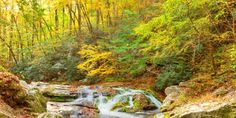 Fall hikes in the Smoky Mountains #travel #roadtrips #roadtrippers