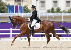 Karen O'Conner and Mr. Medicott USA Dressage London Olympics