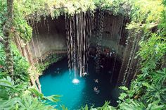 Swim in the cenotes! Ik Kil is the most famous one