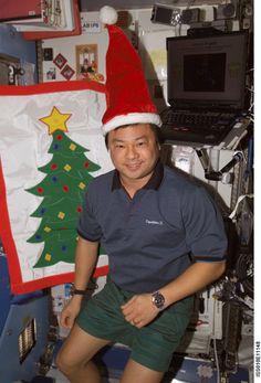 InterStellar News: Holidays in Space: An Astronaut Photo Album