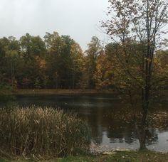 Camp STFO early fall
