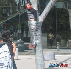duct taped to tree | Duct_tape_to_a_Tree