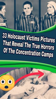 33 Holocaust Victims Pictures That Reveal The True Horrors Of The Concentration Camps Wtf Funny, Funny Facts, Funny Jokes, Hilarious, Stupid Funny, Post Workout Protein Shakes, News 9, Thing 1, Chinese Humor