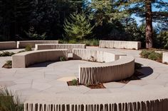 Fletcher Studio embeds cemetery alternative into Californian forest Bartlett School Of Architecture, Architecture Student, Landscape Architecture, Forest Conservation, Sequence Of Events, Staff Room, Building Section, Concrete Building, Tree Canopy