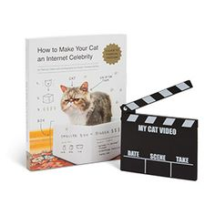 881d3684d2 How to Make Your Cat an Internet Celebrity