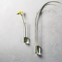 flower lab. Crafted of ultra-durable beaker glass, slim, simple tube has modern florals down to a science. Gives rise to a bloom or two on the wall. We like to experiment with multiples.