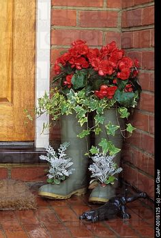 Wellington boots used as containers planted with Begonia, Hedera and Senecio
