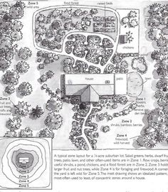 Backyard Permaculture Design to create an amazing garden! Permaculture design principles & permaculture design ideas to grow your permaculture garden Permaculture Design, Permaculture Garden, Homestead Layout, Farm Layout, Plan Drawing, Forest Garden, Hobby Farms, Thing 1, Farm Gardens
